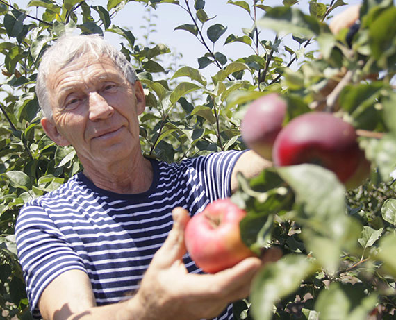 Почему аграрии делают ставку на садоводство?